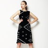 Ethnic Pattern on Black Background. (Dress)