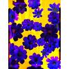 Blu Flowers (Original)
