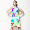 Arcadian Rainbow (Dress)