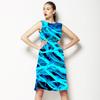 Net (Dress)