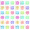 Rosey Neon Checks (Original)