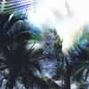 Tropical Leaf (Original)