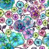 Dianthus Multicolour (Original)