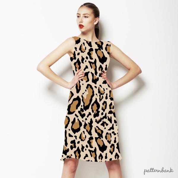 Leopard003