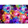 Vibrant Abstract Floral (Original)