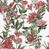Botanical Illustration Pattern (Original)