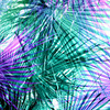 Palm Tree Leaf Texture (Original)