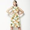 Ripe Persimmon (Dress)