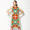 Tropical Leaves and Flowers With Ethnic,tribal Border (Dress)