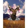Deerhead (Original)
