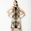 Ma_260 (Dress)