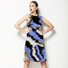 Zebra Variation (Dress)
