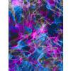 Purple Electric Waves (Original)