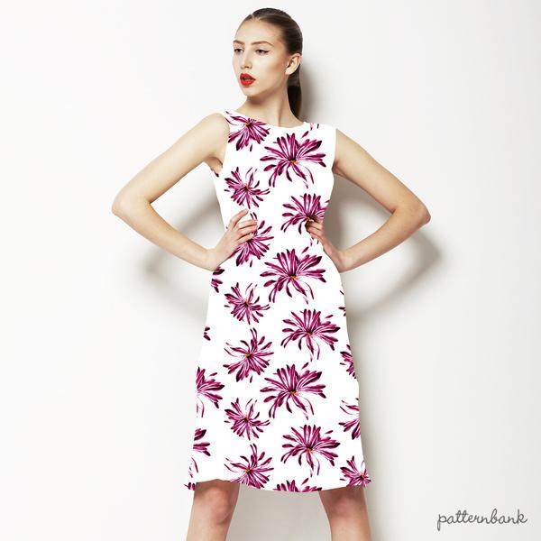 Chrysantemus
