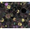 Shiny Circles in the Dark (Original)