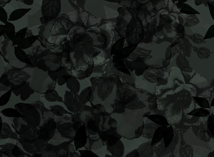 113288 preview medium