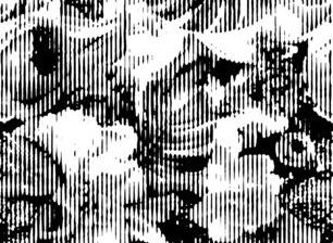 145072 preview medium