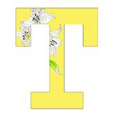 T Textile Design